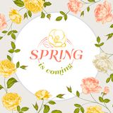 Spring background with text. Royalty Free Stock Images
