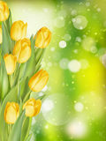 Spring background with tulips. EPS 10 vector illustration