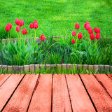 Spring background tulips wooden panel Stock Photo