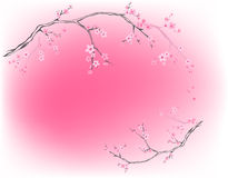 Spring background vector Stock Photography