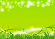 Spring background. Vector abstract spring background, eps10 file, gradient mesh and transparency used Stock Images