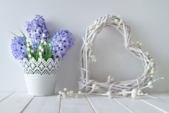 Blue hyacinth and lily of the valley flowers with a white wattl. Spring background in white and blue. Blue hyacinth and lily of the valley flowers with a white stock photo