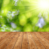 Spring background. With wooden planks Royalty Free Stock Photos