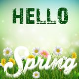 Spring background with word Spring in the grass and flowers Stock Photography