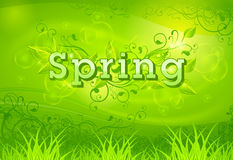 Spring background green Stock Photo