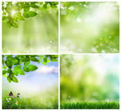 Spring backgrounds Royalty Free Stock Images