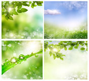 Spring backgrounds stock image