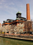 Spring in Baltimore MD. Cherry blossoms in Baltimore inner harbor MD Royalty Free Stock Photos