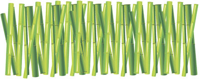 Background of the green bamboo Stock Image
