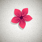 Spring Banner Royalty Free Stock Photo