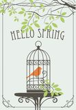 Spring banner with bird in cage under green tree. Vector banner with lettering Hello Spring. Spring landscape with the bird is in the cage on the table under the Stock Images