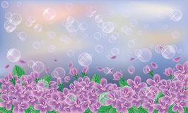 Spring banner. Cherry flowers on sky background Stock Photography