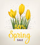Spring banner with crocus Stock Photo