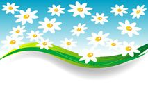 Spring banner Stock Image