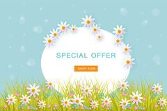Spring banner with flowers, green grass and blue sky with big white oval space for text. Spring banner with flowers, green grass and blue sky with big white Stock Photo