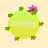 Spring banner with green clover and flowers. Spring banner with green clover and pink flowers Royalty Free Stock Images