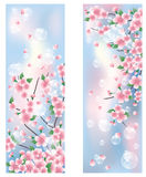 Spring banners. Two spring banners, vector illustration Stock Images