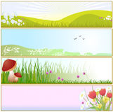 Spring Banners. Vector illustration of  Beautiful Easter/Spring Banners or Backgrounds Royalty Free Stock Images