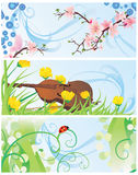 Spring banners set with blossom tree, violin, flowers and ladybi Stock Photography
