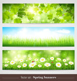 Spring banners Royalty Free Stock Image
