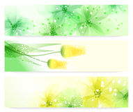 Spring banners. Vector flowers background. Stock Images