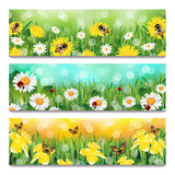 Spring Banners. Vector set of three spring banners with working bees, ladybirds, butterflies and different flowers in fresh grass Stock Photo