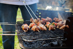 Spring barbecue Royalty Free Stock Image