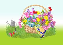 Spring basket Royalty Free Stock Photography