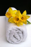 Spring Bathroom Spa. Bright yellow daffodils to symbolize Spring and natural beauty in bathroom spa Stock Photos