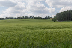 Spring in bavaria Stock Photography