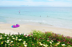 Spring beach Valdevaqueros Royalty Free Stock Image