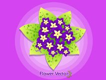 Spring Beautiful Flowers On Color Background. Summer and decorat. Ion element. Vector illustration. Floral and garden