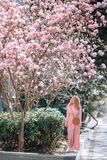 Spring Beautiful romantic girl in fashion dress standing in blooming magnolia trees. royalty free stock image