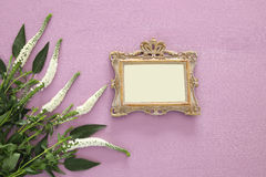 spring beautiful white flowers and blank victorian photo frame Stock Photos