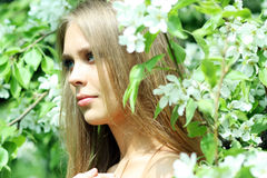 Spring beauty. Young woman on outdoor background Royalty Free Stock Image