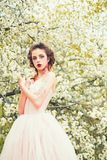 Spring beauty. face and skincare. womens health. allergy to flowers. Summer girl at blooming tree. Springtime. weather royalty free stock images