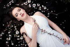 Spring beauty or woman cosmetics consept. Fashion portrait shot Royalty Free Stock Images