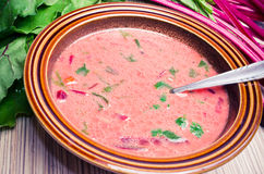 Spring beetroot soup Stock Images