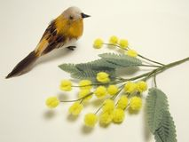 Spring begins. A sweet bird and yellow flowers to welcome spring season Royalty Free Stock Photography