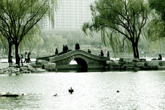 Spring in Beijing. Spring returns to the good earth, it is a hope in spring Stock Photo
