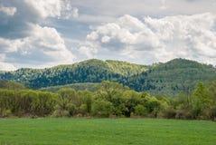 Spring in Bieszczady Mountains. Forests in Bieszczady Mountains, Poland Stock Photo
