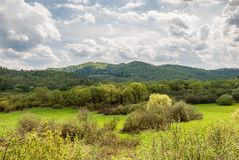 Spring in Bieszczady Mountains Stock Photography