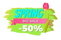 Spring Big Sale -50 Off Advertisement Label Tulip. Flower, cute springtime blooming bud on promo emblem isolated on green brush stroke backdrop Royalty Free Stock Photos