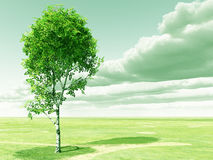 Spring birch. Beautiful landscape with tree. 3d image Stock Photo