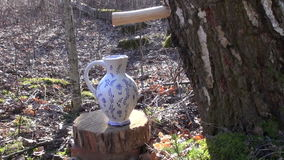 Spring birch sap drops in decorative ceramic pitcher jar
