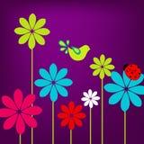 Spring bird Stock Image