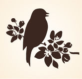 Spring bird singing on floral twig of tree. Vector bird and flowers silhouette Royalty Free Stock Image