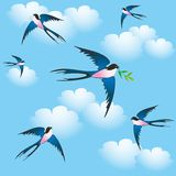 Spring birds. In the sky, seamless Stock Photography