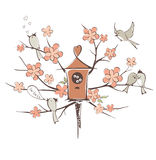 Spring birds on a tree Stock Images