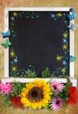 Spring Blackboard Stock Photography